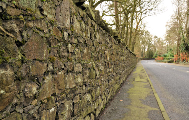Stone wall, Dunmurry