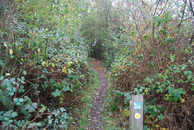 Footpath, Northward Hill Reserve