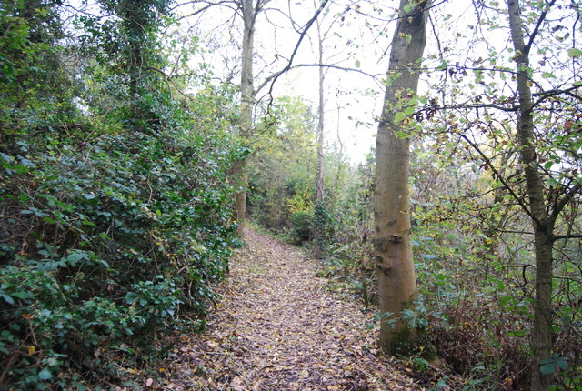 Footpath in Northward Hill Reserve