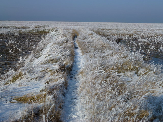 The Wash coast in winter - Narrow foot path to the wilderness