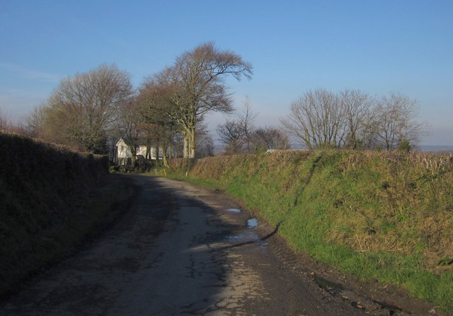 Lane at Higher Bradaford