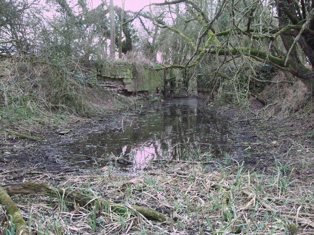 Derelict lock, Thames and Severn Canal