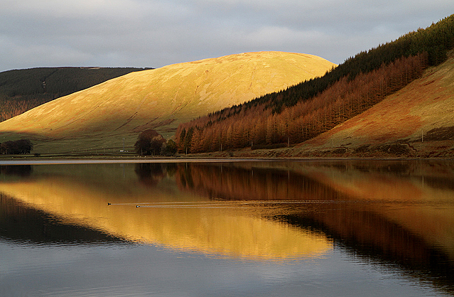 Reflections on Loch of the Lowes