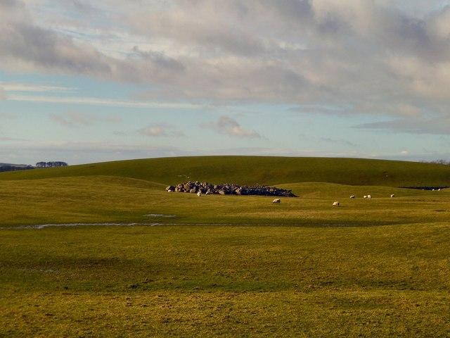 Millgrane Hill