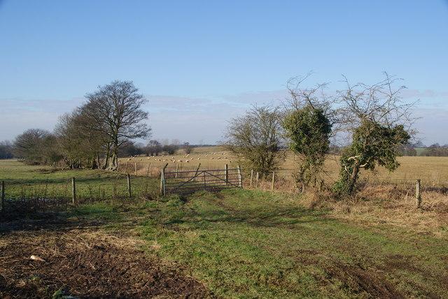 Farmland near Brocton