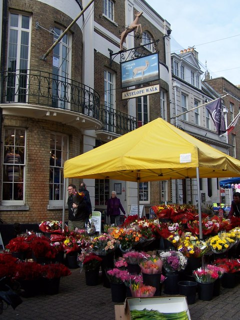 Flower stall outside Antelope Walk, Cornhill
