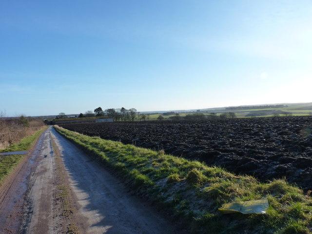 Track to Balmullo