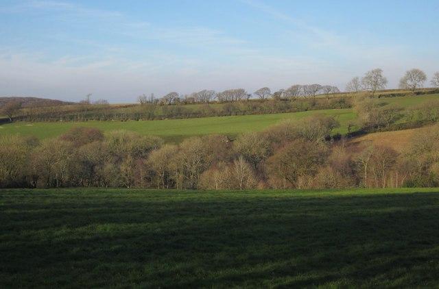 Fields north of Virginstow