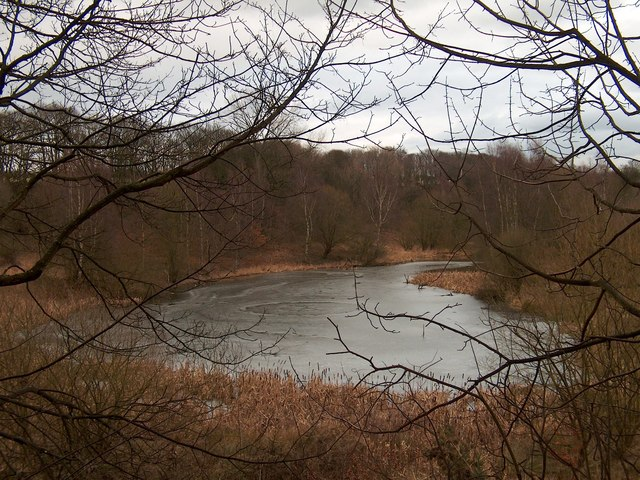Woodall Pond in February
