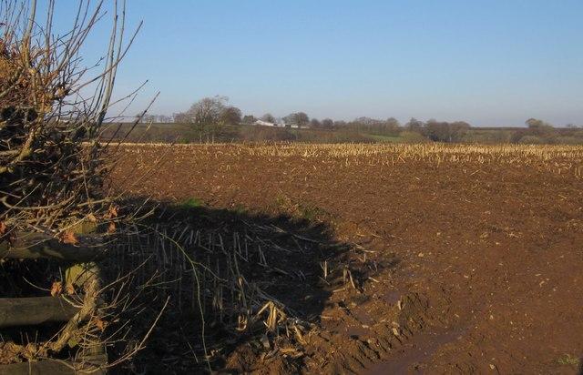 Arable field south of Dubbs Cross