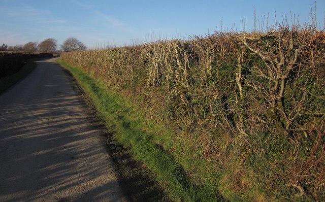 Lane to Dubbs Cross