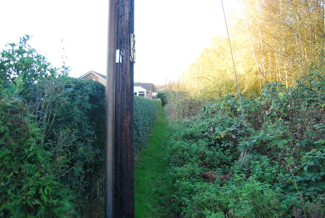 Footpath on the edge of Sturry