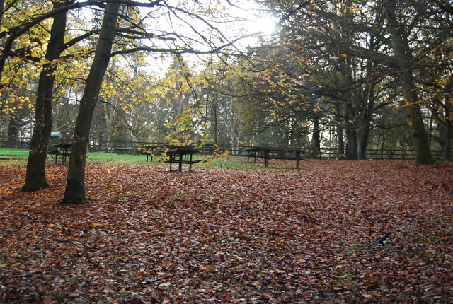 Picnicbenches, Tilgate Park
