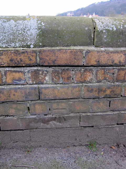 Bench mark in Oriel Crescent