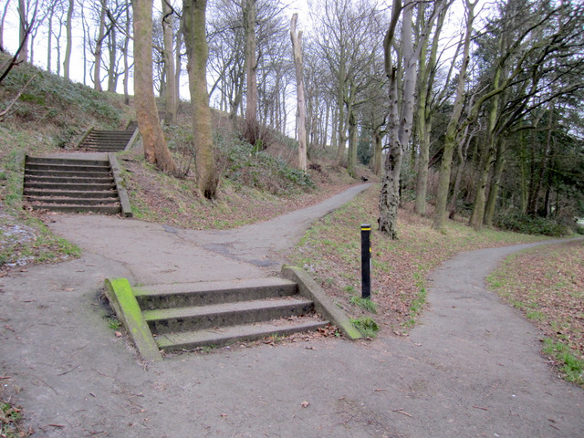 Steps and paths in Falsgrave Park