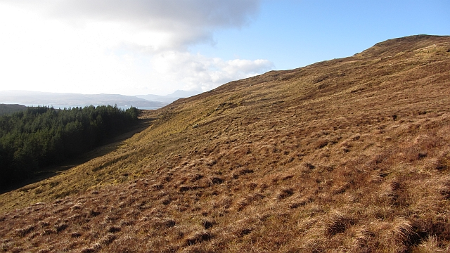 Slopes of  Meall Bhuidhe