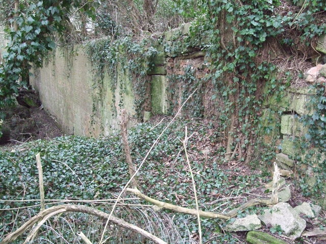 Walling, disused lock, Thames and Severn Canal