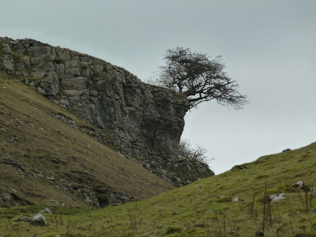 Limestone scenery in upper Cressbrook Dale