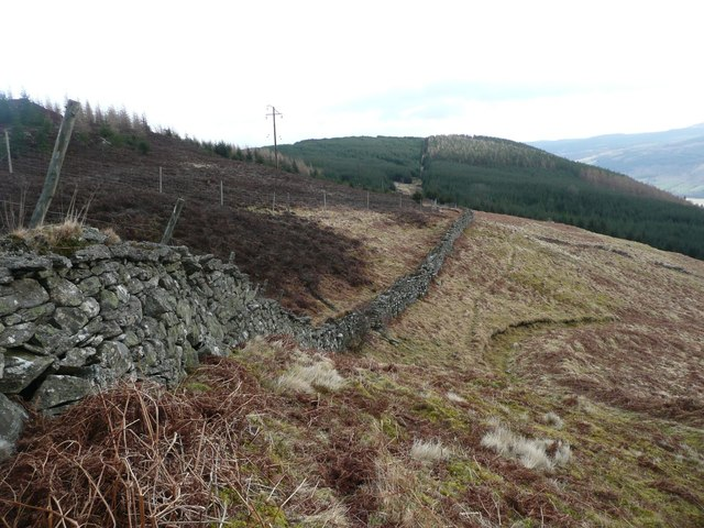 Dry stone wall at the top of the pasture