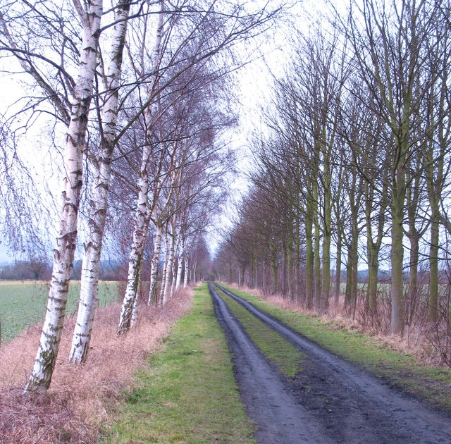 Former railway track, Hovingham