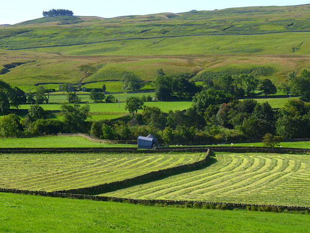 Farmland, Middleton-in-Teesdale