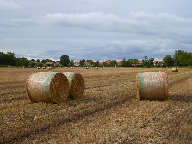 Farmland, Sutton-on-the-Forest