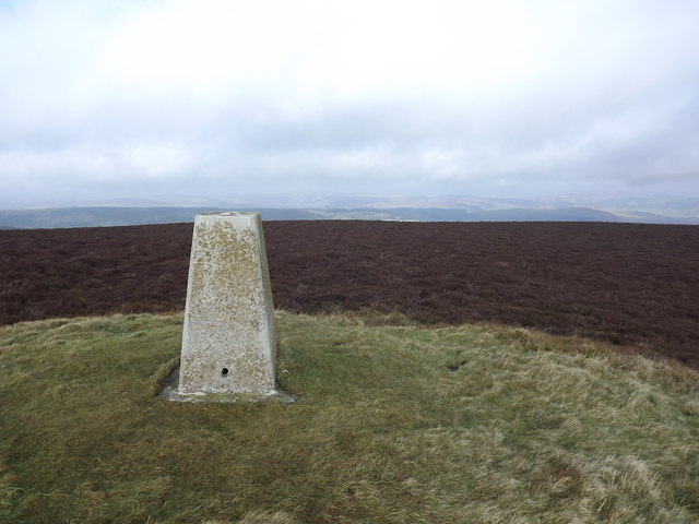Trig point on Bache Hill