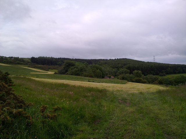Fields and woods west of Pontop Hall
