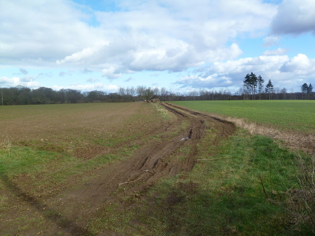 Harbridge, farm track