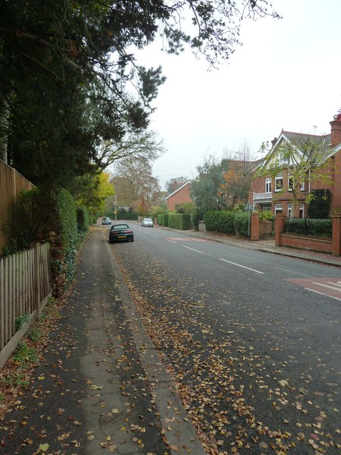 Pavement in The Mount