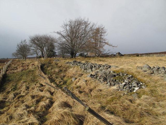 The ruins at Hillhead