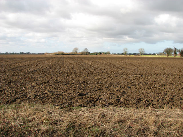 View towards the gun butts on the edge of Ludham airfield