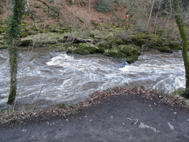 The Start of 'The Strid' - River Wharfe