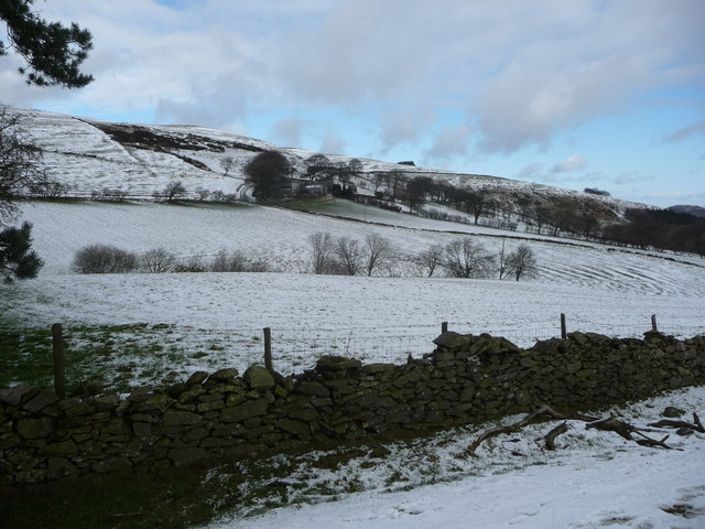 Snowy fields below Fron-heulog farm