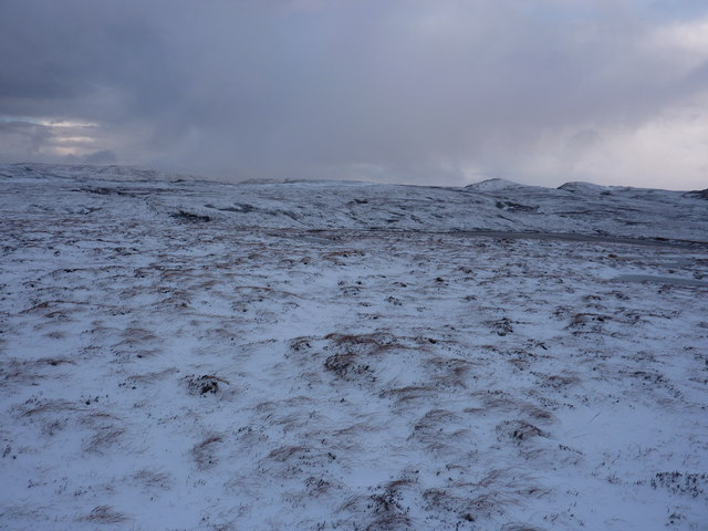 A wild day on the moor