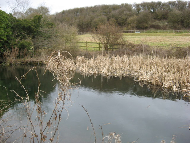 Livestock water supply in the Medbourne valley