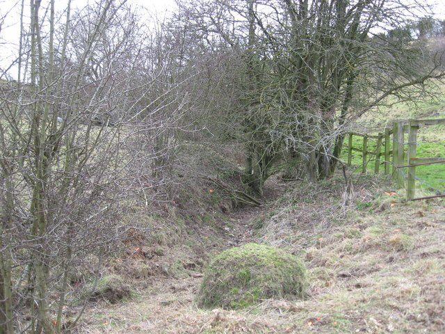 Source of a spring in the upper Medbourne valley