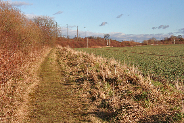 Footpath round the Field
