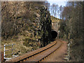 NM8581 : Railway entering tunnel by Trevor Littlewood