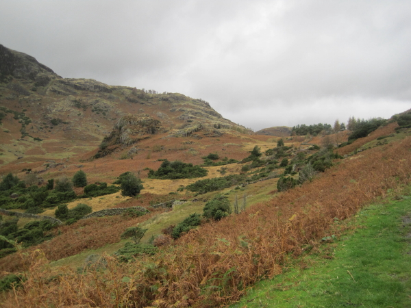 View Towards Tarnclose Crags