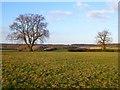 SP9204 : Farmland, Chartridge by Andrew Smith