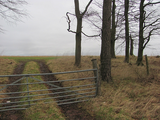 Field entrance, Dovetshill
