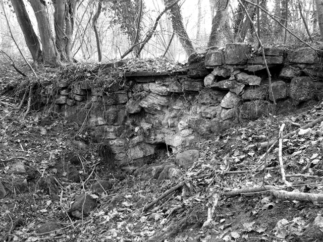 Old disused sluice in Ferretshill Plantation