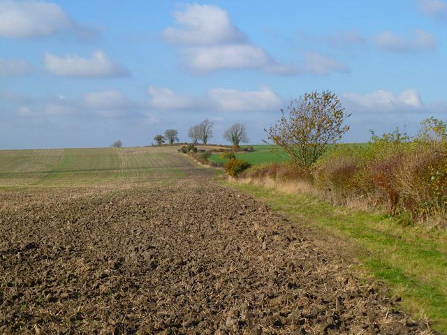 Farmland, Hilmarton