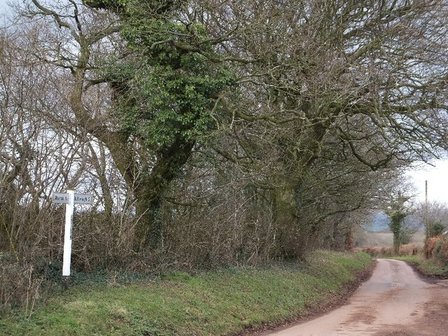 Christ Cross and road to Butterleigh