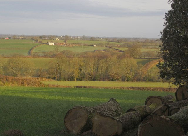 Countryside near Honeychurch