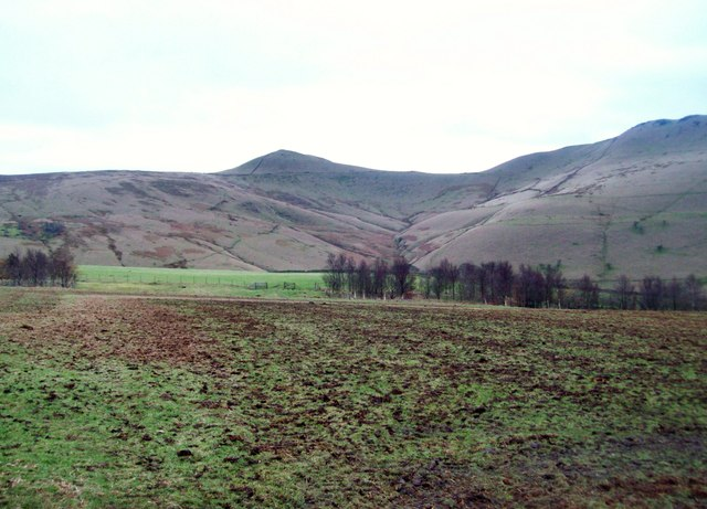 Manured Field near South Head Farm