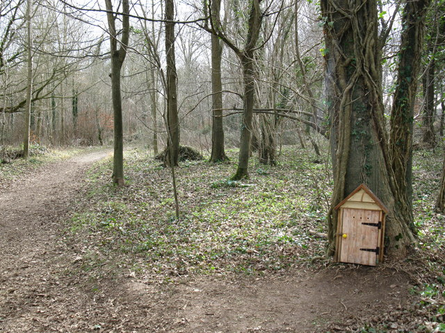 Door to the tree house? & Door to the tree house? © don cload :: Geograph Britain and Ireland pezcame.com