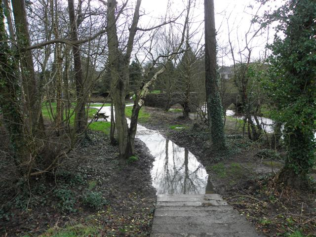 Flooded path, Cranny