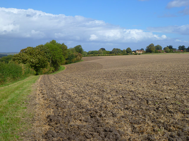 Farmland, Kingston Lisle